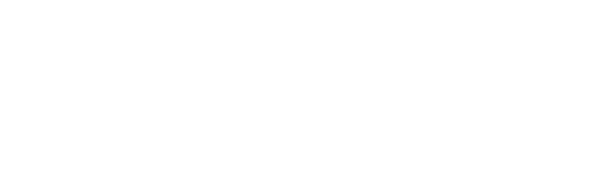 logo partners vice